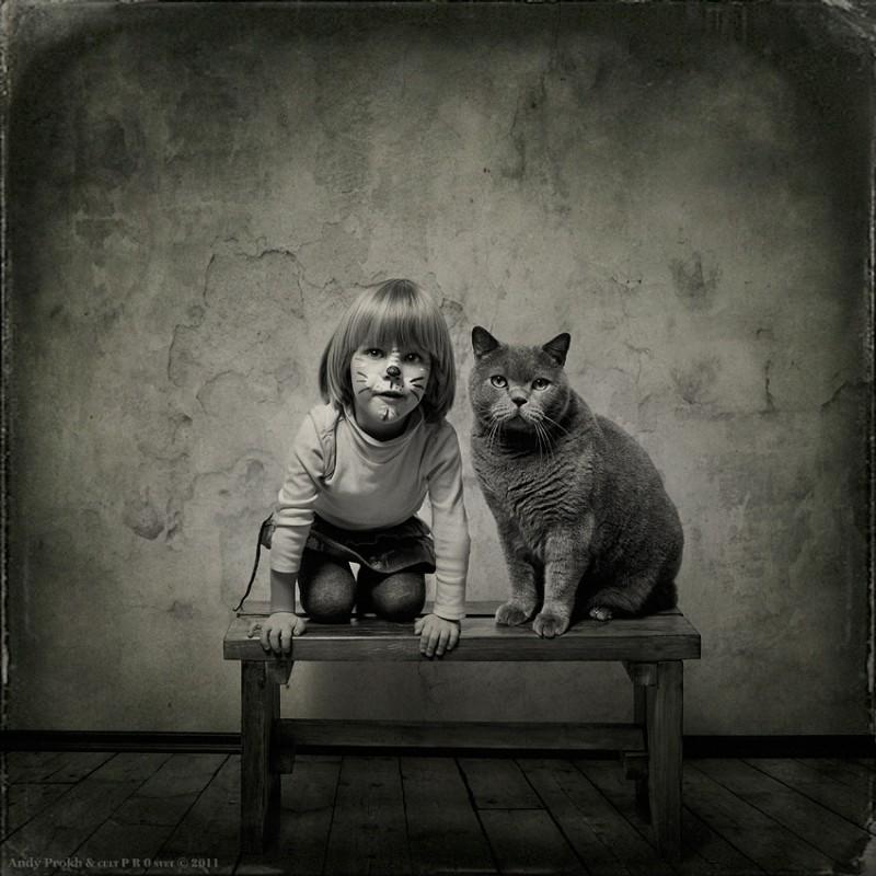 Andy Prokh A Menina e Gato Tom (11)