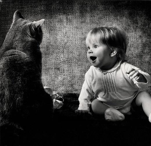 o-fotografo-russo-andy-prokh-45-fotografou-o-cotidiano-de-sua-filha-katerina-de-quatro-anos-com-o-gato-da-familia-lilu-blue-royal-lady-katerina-e-lilu-convivem-desde-que-a-menina-1367863811036_519x500
