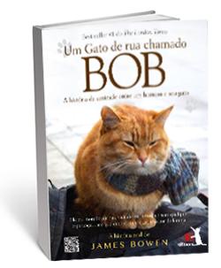 bob-um-gato-de-rua