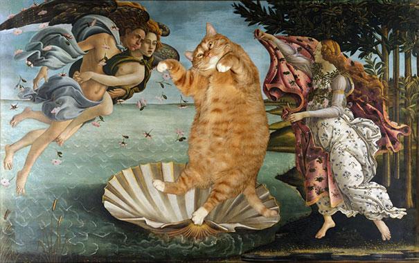 gordo gato Zarathustra (6)