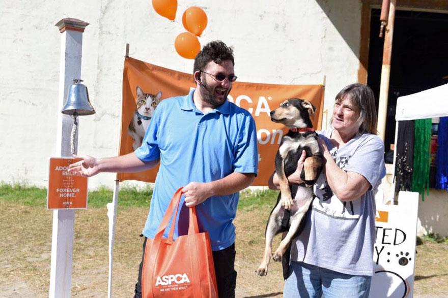 524-perros-gatos-adoptados-evento-aspca-10