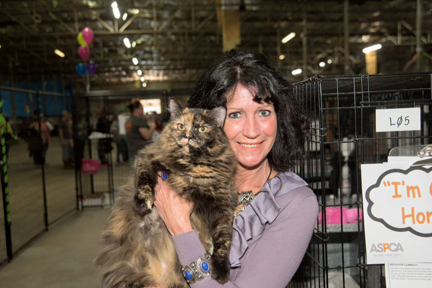 524-perros-gatos-adoptados-evento-aspca-9
