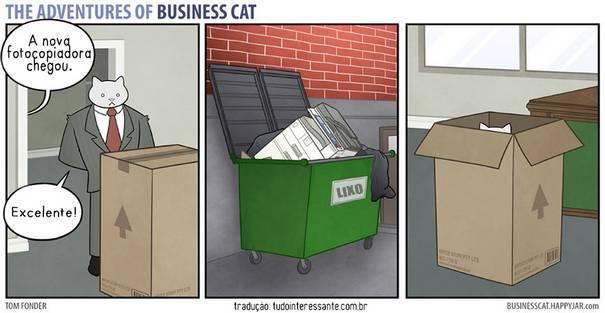 Gato CEO 2