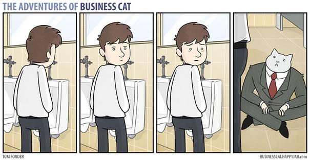 Gato CEO 4