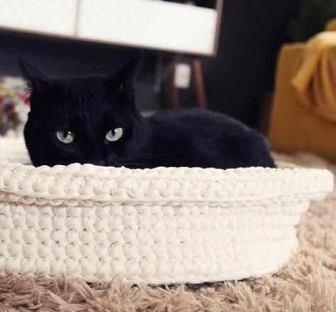 Cama do gatinho