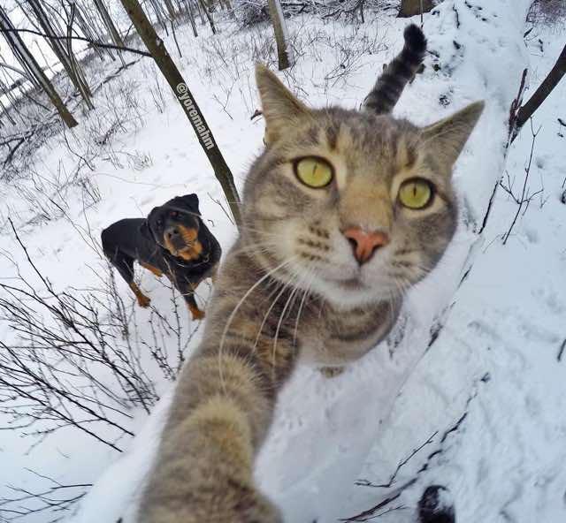 selfie-10