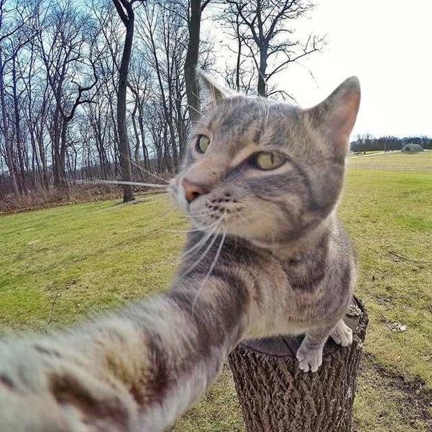 selfie8
